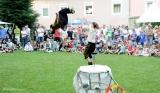 Gaukler am Stadtfest Judenburg